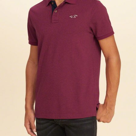 Hình Áo thun nam Hollister HCO-P89 Stretch Pique Icon heather purple