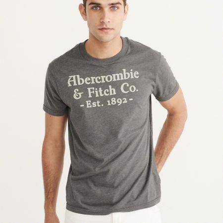 Hình Áo thun nam Abercrombie & Fitch AF-US-T05 Printed Logo Graphic