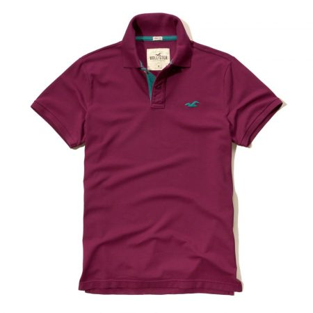 Hình Áo thun nam Hollister HCO-P159 Stretch Pique Polo Purple