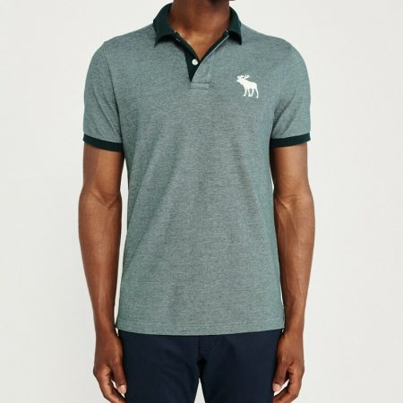 Hình Áo thun polo Abercrombie & Fitch AF-US-P48 Stretch Exploded Icon Polo