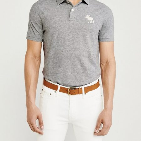 Hình Áo thun polo Abercrombie & Fitch AF-US-P50 Exploded Icon Stretch Polo
