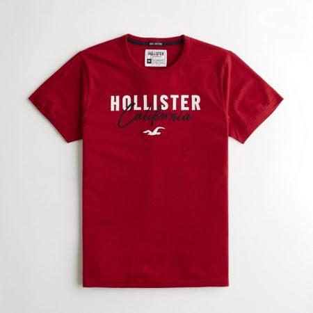 Hình Áo thun nam Hollister HCO-US-T19 Embroidered Logo Graphic Tee