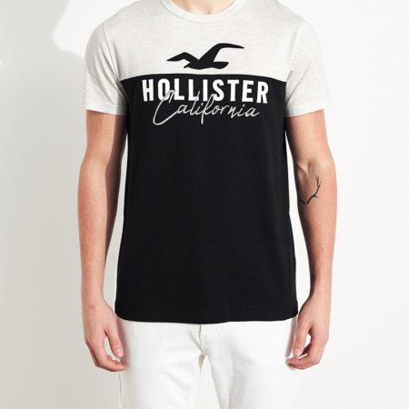 Hình Áo thun nam Hollister HCO-US-T25 Colorblock Logo Graphic Tee
