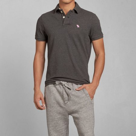 Hình Áo thun polo Abercrombie Fitch AF-P123 Stretch Icon Polo Grey